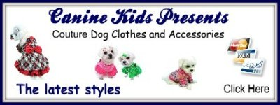 dog clothes and accessories