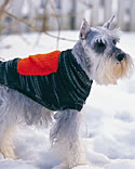 Large dog sweater pattern