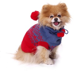 small dog sweater pattern