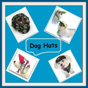 dog clothing hats