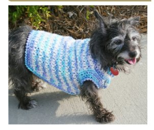 crochet dog clothes free crochet patterns dog sweaters
