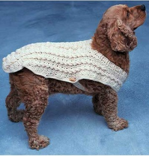 A free easy crochet dog sweater pattern for a small dog