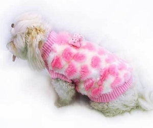 dog grooming apparel