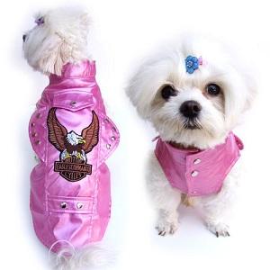 tiny dog clothes