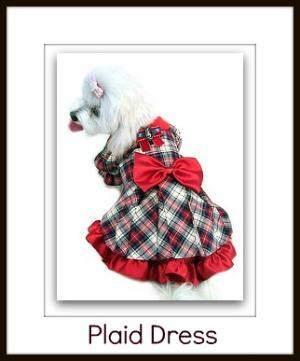 little dog clothes