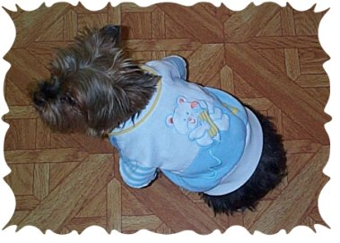 how to sew dog clothes 2