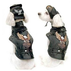 Harley Davidson Dog Clothes