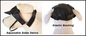 boston terrier dog hats